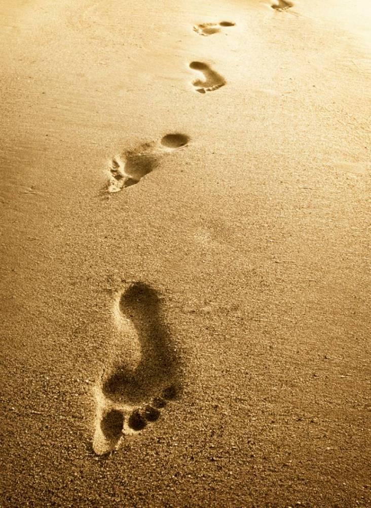 My Walk with Jesus Vol. 28
